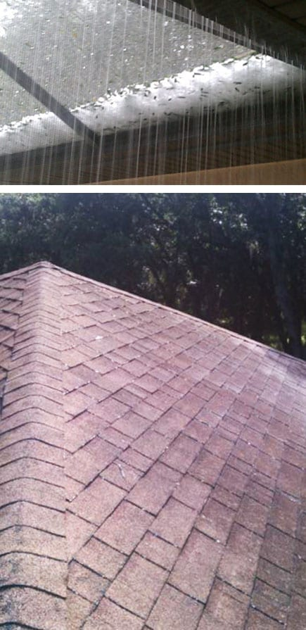 Hail Damage Vero Beach West Palm Beach